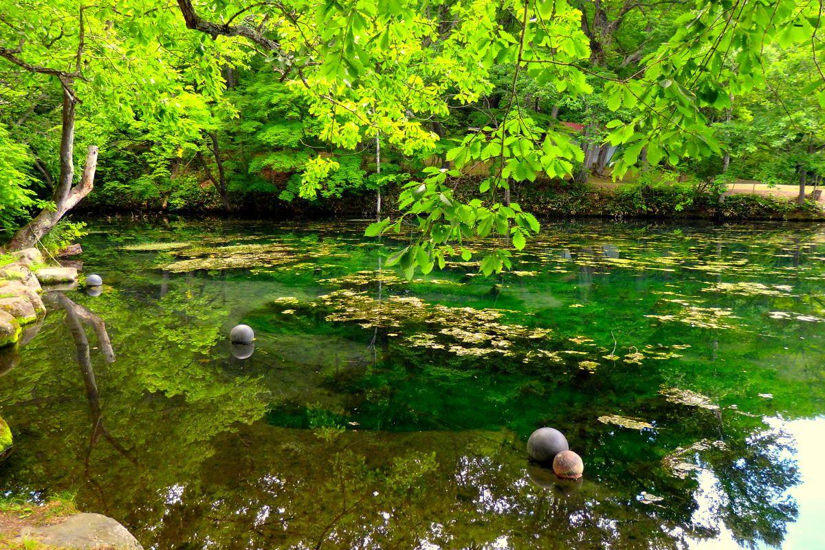 フォトジェニックな「鳥沼公園」は穴場の絶景スポット