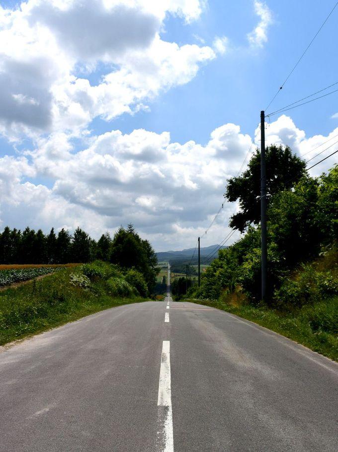 ドライブする路自体も面白い!「ジェットコースターの路」