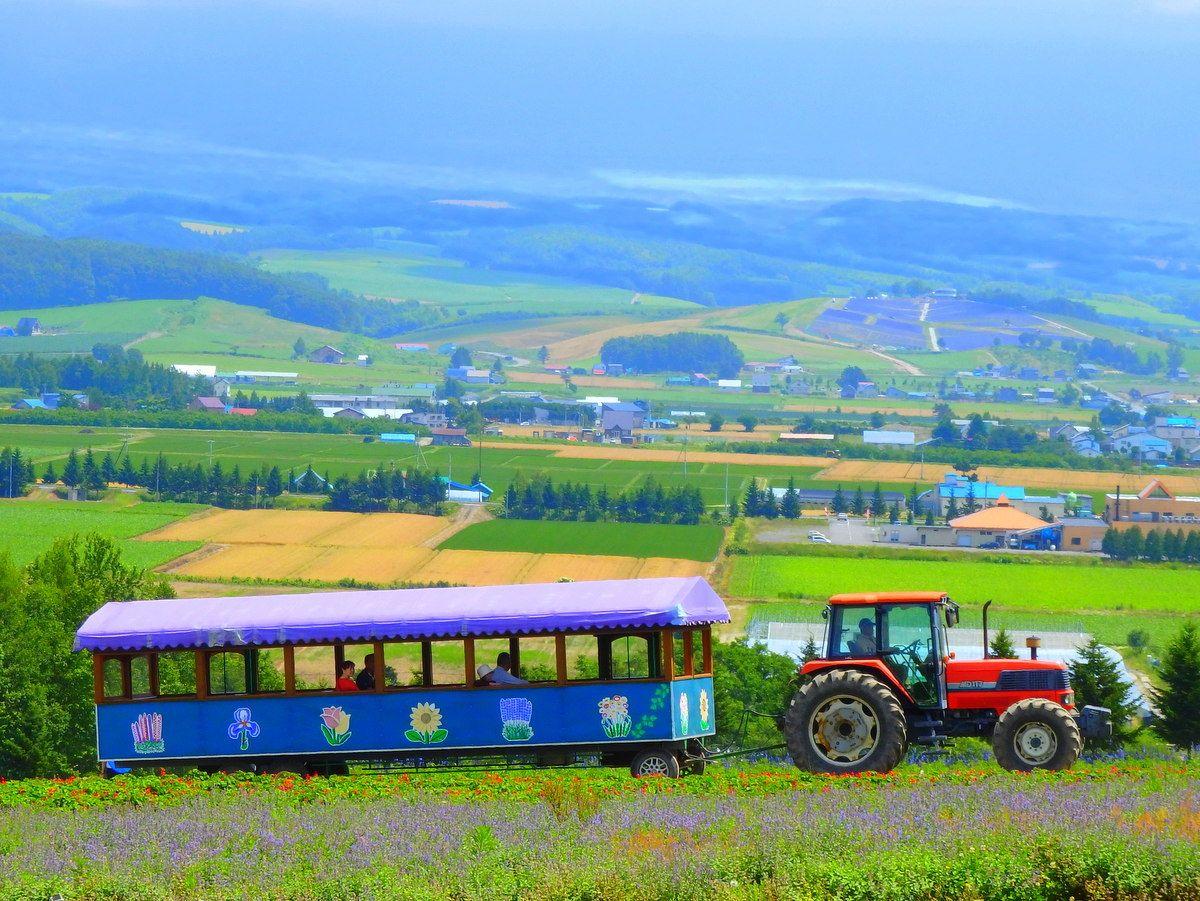 トラクターバスで花畑と雄大な景色が楽しめる「フラワーランドかみふらの」