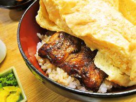 美味でインパクト大な京都の丼・ご飯4選!京都グルメにぞっこん