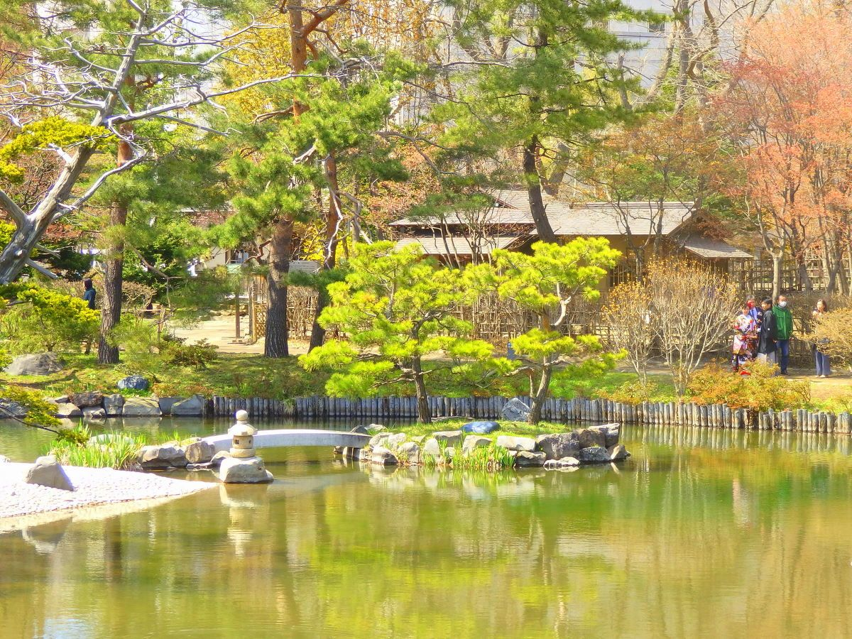 公園内を流れる川や池と水鳥たち、日本庭園も必見。