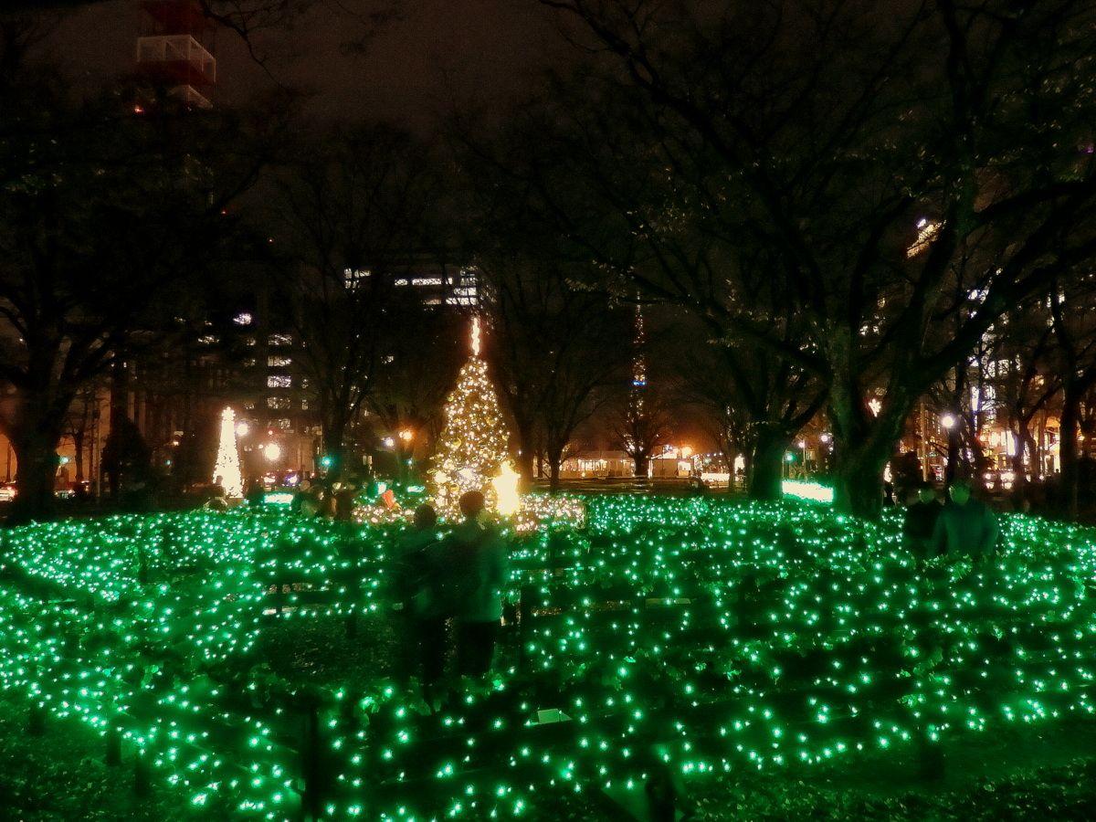 ☆大通5丁目会場「クリスマスガーデンカフェ」、6丁目会場「フォレストアート」
