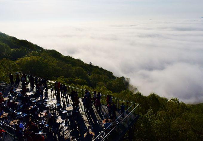感動を共有!「雲海テラス」で絶景を見る
