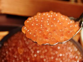 星野リゾート トマム・朝食券の使えるおすすめ7店を比較!人気のメニュー&雰囲気は?
