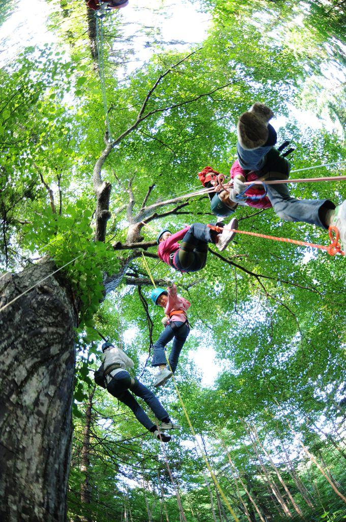 大人も子供も楽しめる大自然のアクティビティ