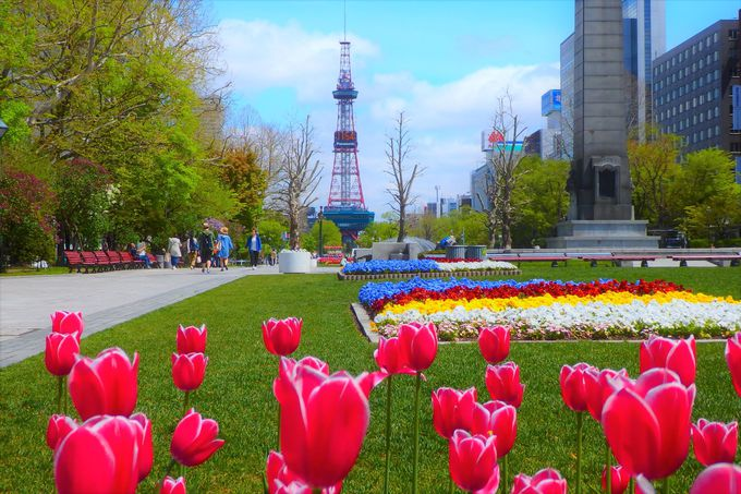 大通公園がすぐそば。札幌観光に抜群の立地