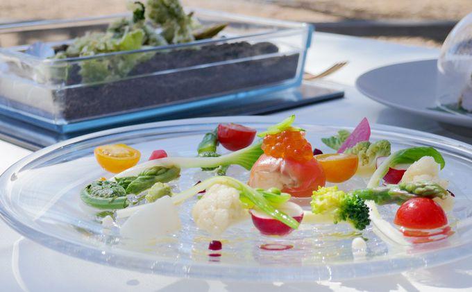 フォトジェニックなワイルドハーブランチで春を食べる