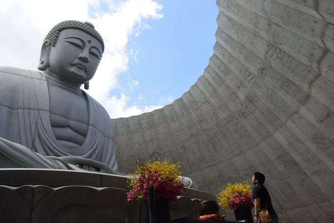 「頭大仏」に対面!北海道の自然を取り込んだ「頭大仏殿」へ