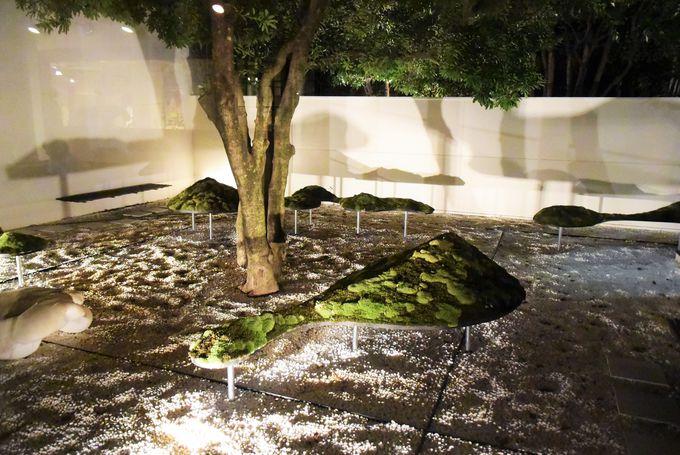 京都から発信されるアートに浸る!