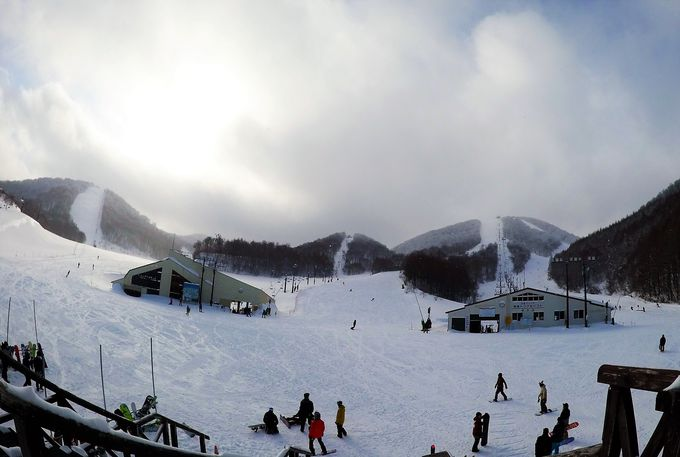 星野リゾート「猫魔スキー場」の魅力
