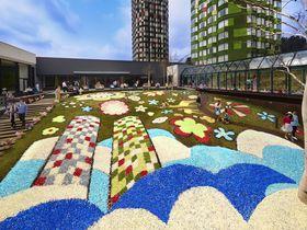 「花咲くトマム」が超キュート!星野リゾート トマムのカラフル×インスタ映えな春