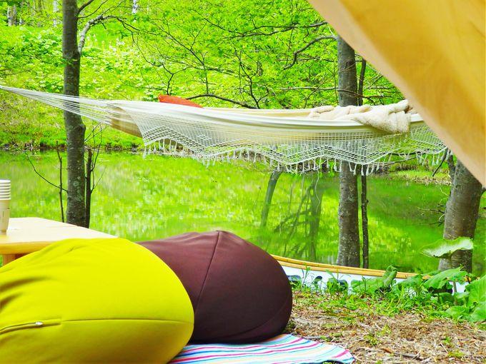 「モーモーカヌーで行くカヌーピクニック」の3つの魅力