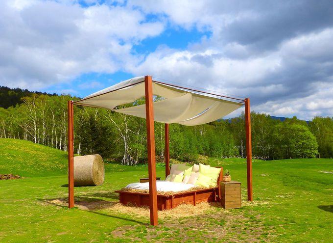 とびきりの朝体験!絶景の「雲海テラス」とファームエリアで「贅沢な二度寝」