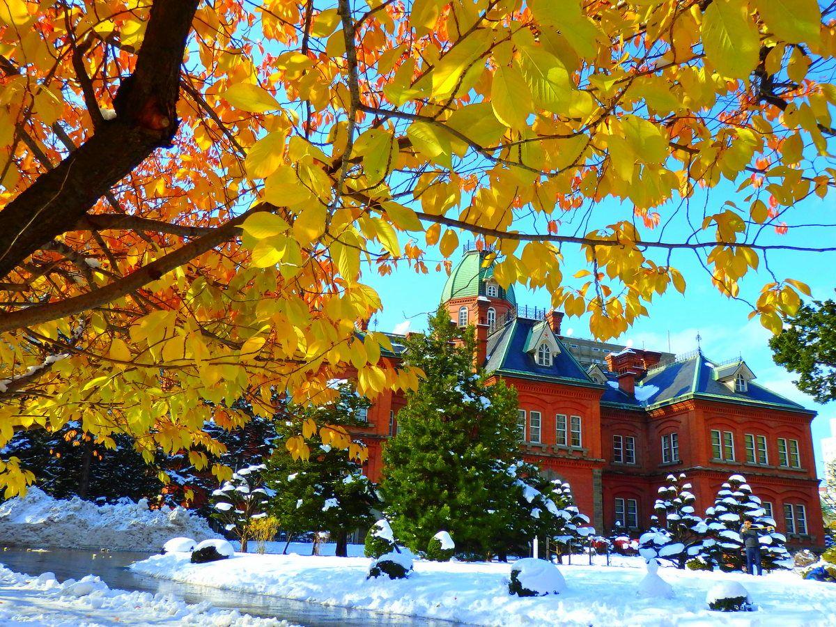 札幌の雪景色はいつから?雪景色を愉しむおすすめスポット