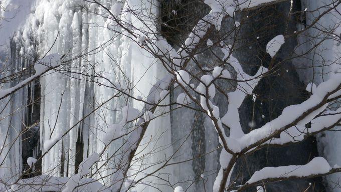 日本でここだけ!冬限定の「氷瀑の湯」で絶景露天風呂