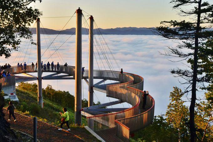 雲海・絶景見放題!トマム山の自然を満喫