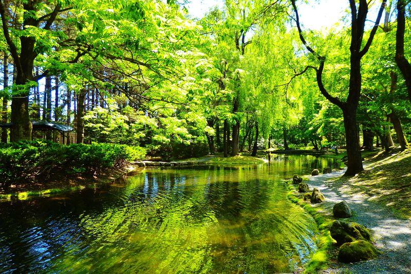 帯広・とかち観光に「真鍋庭園」の緑の癒やし空間がおすすめ