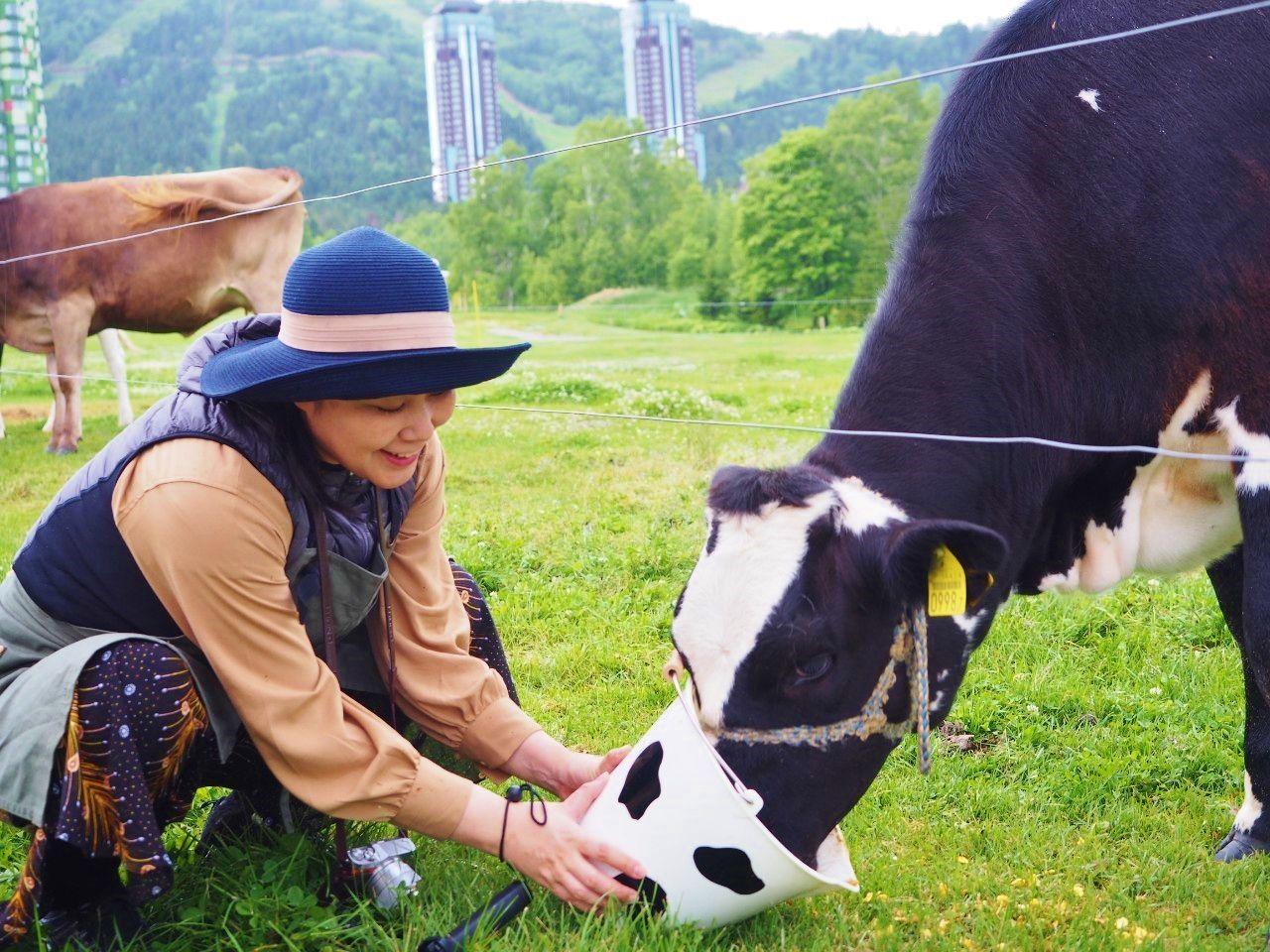 モウダッシュの牛が見られる?搾りたてトマム牛乳が美味