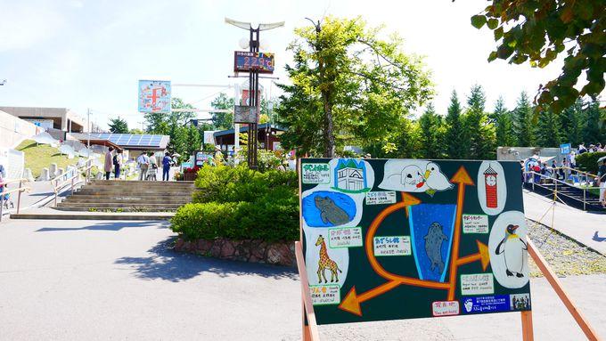 旭山動物園のおすすめルートと所要時間
