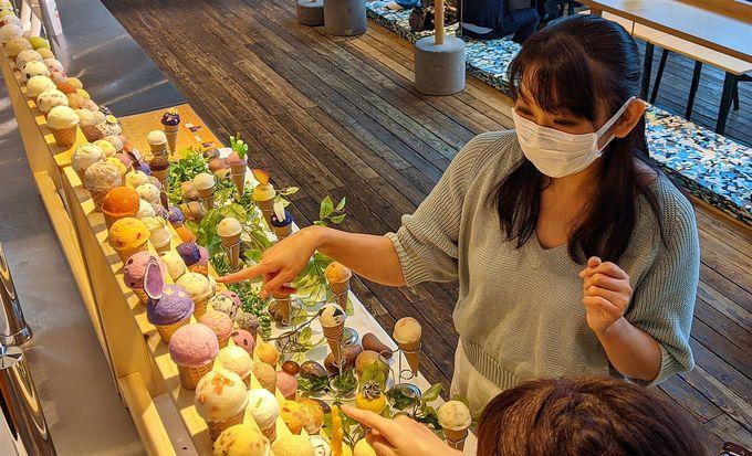 星野リゾート トマムが注目した北海道・秋の旬の味
