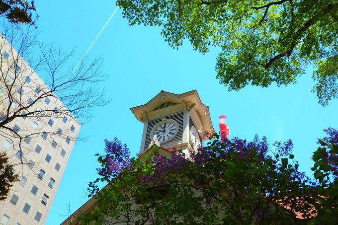 大通公園とさっぽろテレビ塔、札幌市時計台で定番スポットを網羅