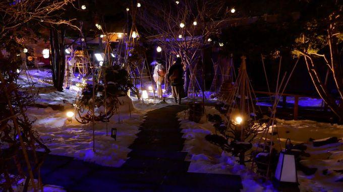 1,000坪の日本庭園が幻想的にライトアップ