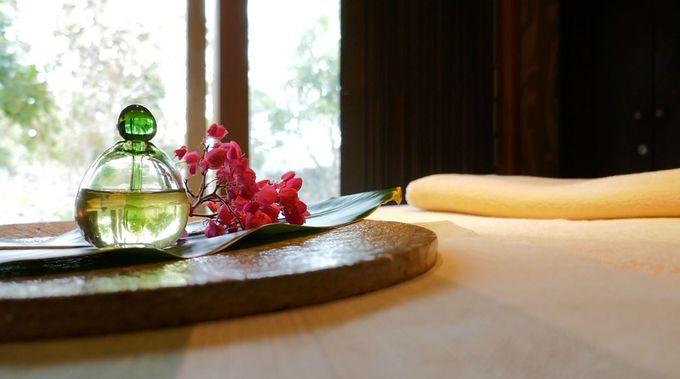 竹富島おすすめの季節〜あなたを癒やす季節はいつ?