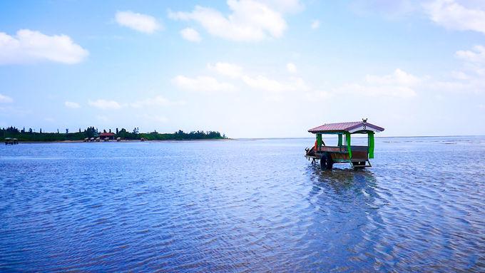 手で触る、海を渡る、海で漕ぐ、西表島の海遊び