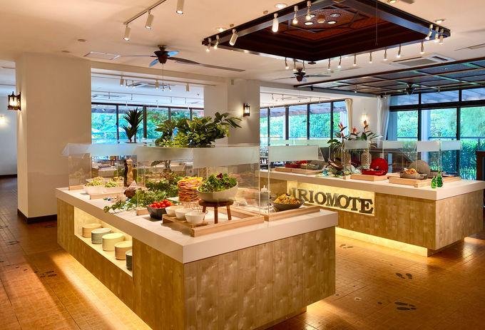 星野リゾート 西表島ホテルのお食事は?