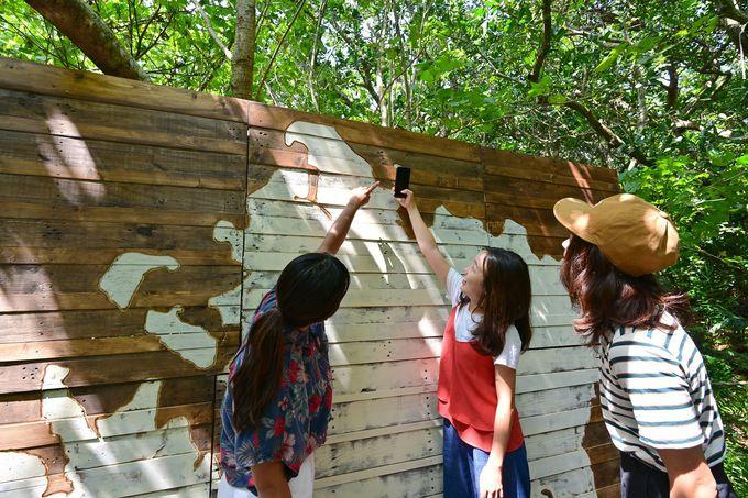 西表島観光の拠点はこのラウンジ&ジャングルキチ