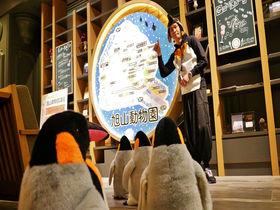 シロクマにペンギンも!星野リゾート OMO7旭川の客室大公開