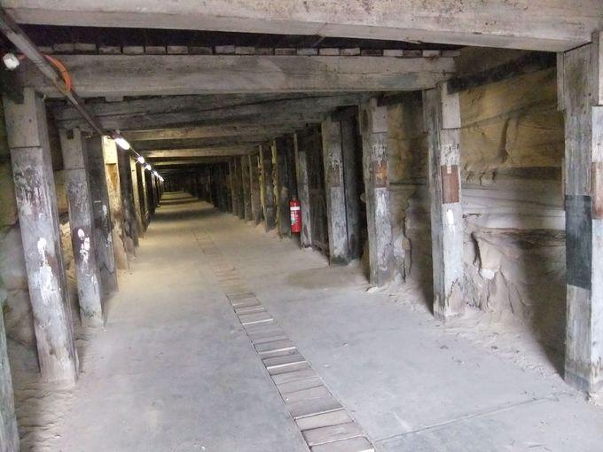 トンネルに入ってみよう
