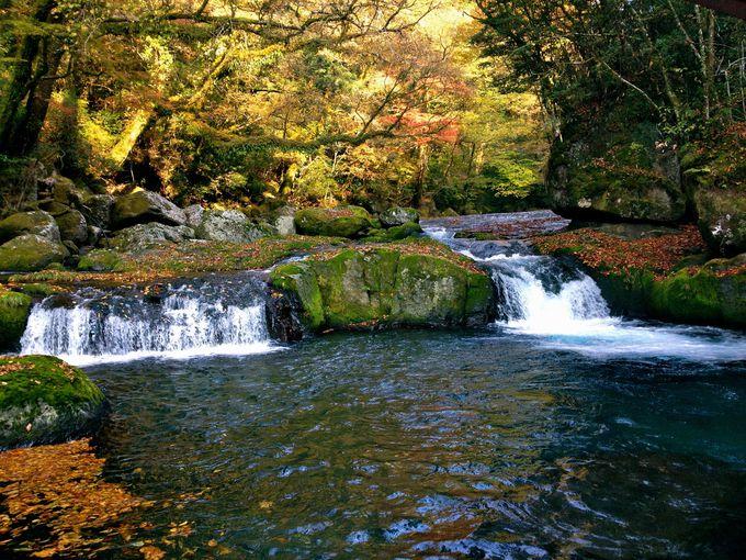 日本の滝百選に選ばれた滝は必見!