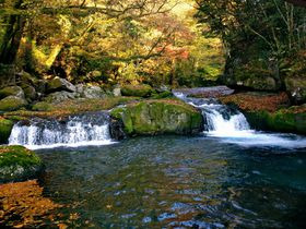 アクセス便利!熊本県「菊池渓谷」で大自然と紅葉を満喫しよう