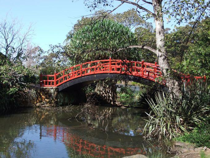 日本と友好の印の橋あり!ボタニックガーデン