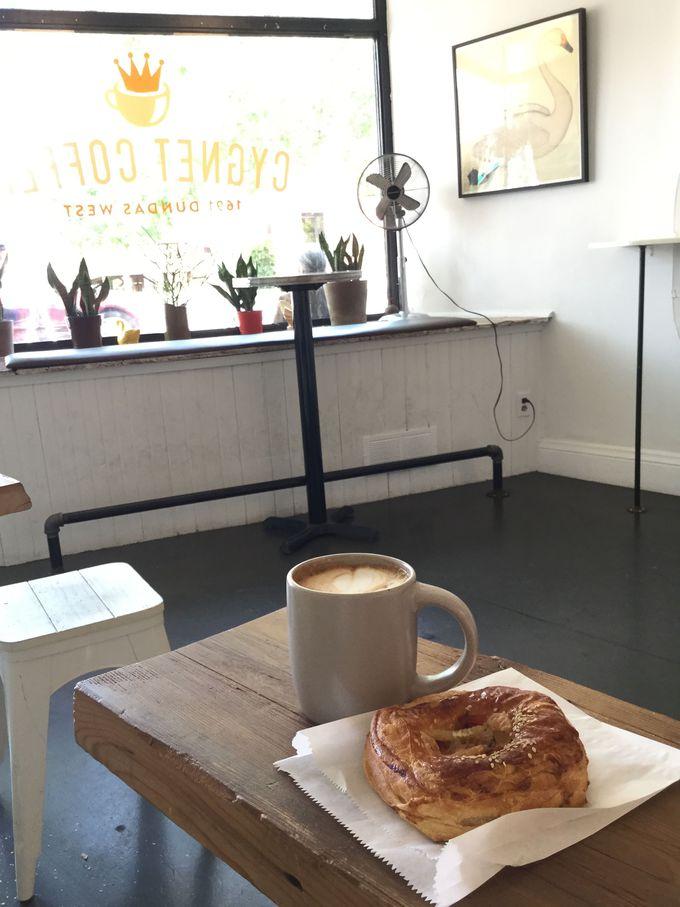 白鳥がテーマのシグネット・コーヒー