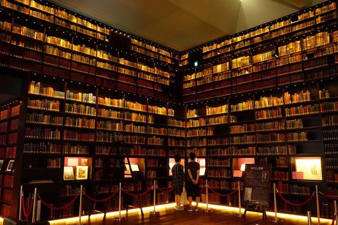壁を埋め尽くす知識の宝庫「モリソン書庫」