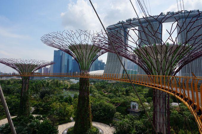 初めての空中散歩へ出かけましょう!シンガポールの全てを独り占めした気分!