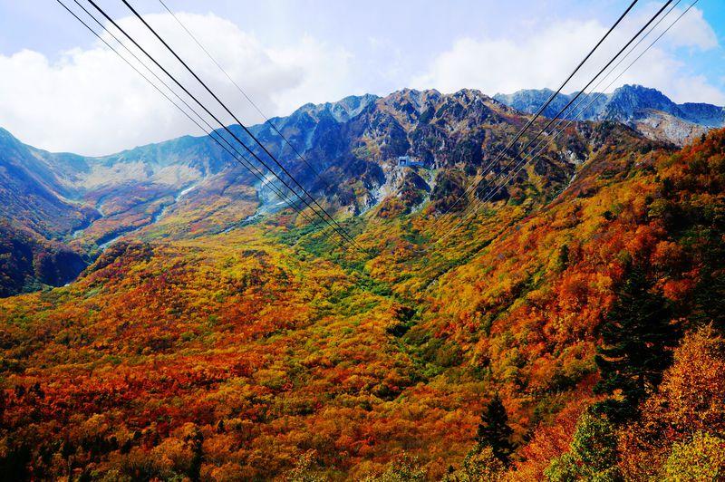 360度大パノラマ!紅葉真っ盛りの立山黒部アルペンルート