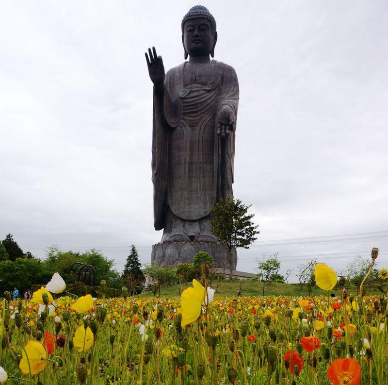 茨城県にある世界一の「牛久大仏」と花と動物に癒される!
