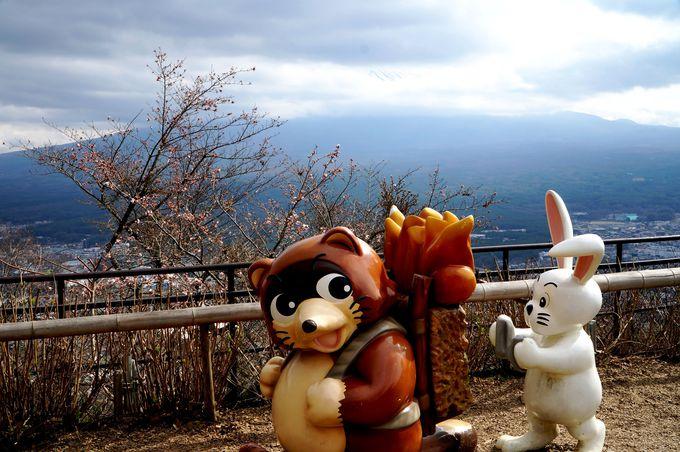 富士山が目の前!撮影スポットがいっぱい!