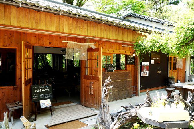鍾乳洞の前とは思えない、大自然の中に急に現れるカフェ
