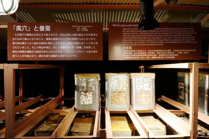 昭和30年代まで使われていた、繭や蚕の天然の冷蔵庫!