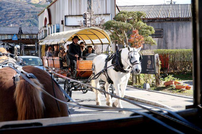 由布院に馬車?!全国でもまれに見る、街中を走り抜ける馬車