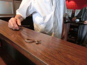 群馬で珍グルメ!ジャパンスネークセンターでマムシ料理を食べよう!