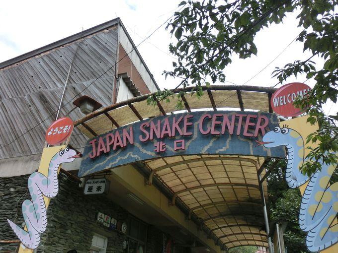 蛇のことならココ!ジャパンスネークセンター