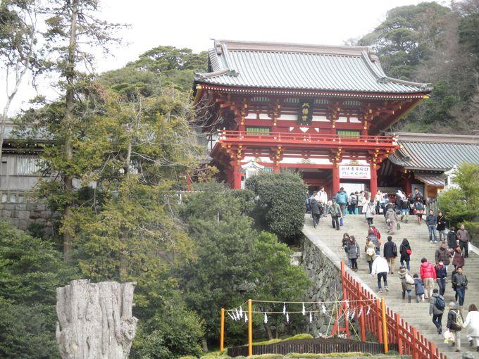 由緒ある鶴岡八幡宮へ立ち寄り、まずはお参り。