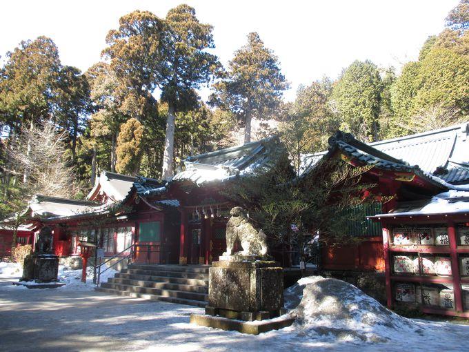 元箱根の鳥居からスタート!パワースポット・箱根神社でまずは参拝。
