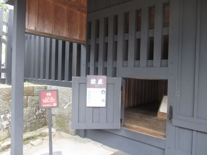 芦ノ湖が見渡せる展望スポットで一休み