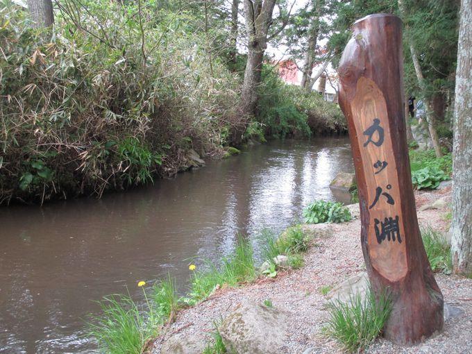 5.平泉と周辺のおすすめ観光スポット